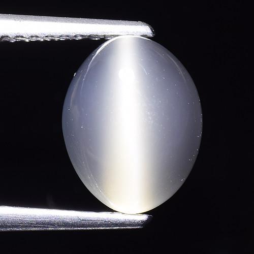 3.07Ct Natural Moonstone Cat's Eye Amazing Gemstone. MS 48