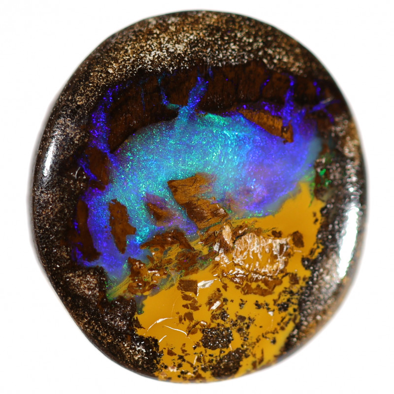 6 CTS WOOD FOSSIL PIPE OPAL KOROIT TFS50