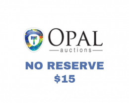 $15 Opal Auctions No Reserve