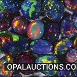 Opal Auctions  Verified Sellers