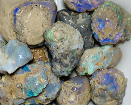 Big & Bright Nobby Rough Opals to be Carved & Cleaned Up