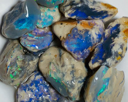 Select Rough Bright Nobby Opals with Nice Cutters & Carvers - Must See Vide
