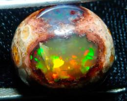 $1 NR Auction 11.82ct Mexican Matrix Cantera Multicoloured Fire Opal Specim