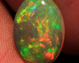 1.60 CT 12X8 MM Investment Grade!!  Welo Ethiopian Opal-ID761