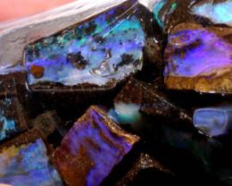 325cts  74pcs Boulder opal Rough Parcel Jar-24