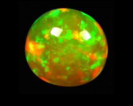 Opal 4.85 Cts AAA Multicolor cabochon BGC654