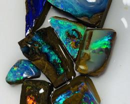 Exquisite Gem Boulder Opals of Winton Field- 37 CTs#737