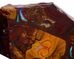 84 cts   Koroit Opal Pre Shaped Rub   DO-1497