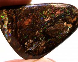 Koroit Boulder Opal Wood Fossil AOH-224 - australianopalhunter