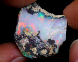 24cts Natural Ethiopian Welo Rough Opal / WR6933