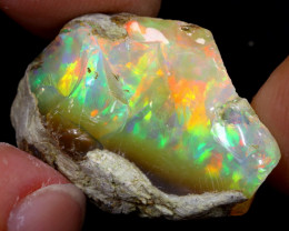 20cts Natural Ethiopian Welo Rough Opal / WR6979