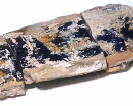 174cts lightning ridge wood/vegetation fossil FO-1525
