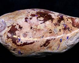 368cts lightning ridge wood/vegetation fossil FO-1532