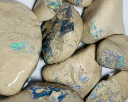 990 Cts Big Size Rough Nobby Opals Showing Very Bright & Promising Colour B