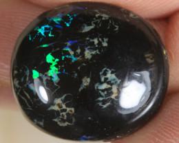 NO RESERVE!! Queensland Boulder Matrix Opal [32719] 53FROGS