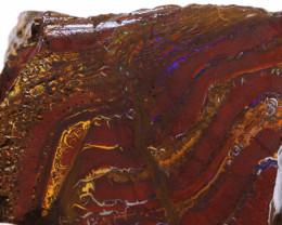 Koroit Boulder Opal  Rough  DO-1670- downunderopals