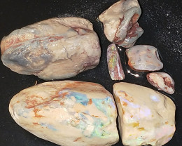 421.72Cts Opalized  L/R Mulock Shell Fossils MBP975