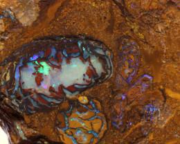 Yowah Boulder Opal Rough DO-1720 - downunderopals