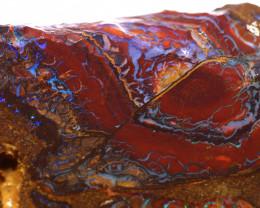 Yowah Opal Rough  236 Carats DO-1726 - downunderopals