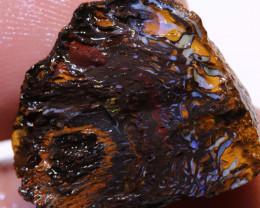 Yowah Opal Rough  31cts DO-1789 - downunderopals