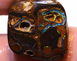 Koroit Boulder Opal Rough   DO-1791 - downunderopals