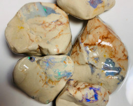 Big Untouched Rough Nobby Opals with Bright Promising Colour Bars to Go Thr