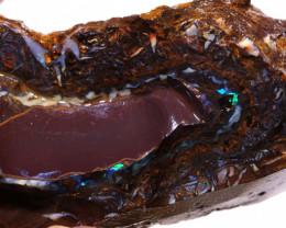 Yowah Boulder Opal Rough  DO-1835 - downunderopals