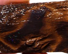 176cts   Yowah Opal Rough  DO-1839