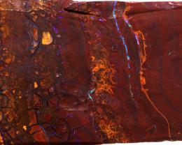 Koroit Boulder Opal Rough DO-1854 - downunderopals