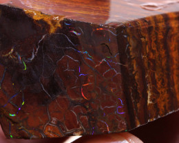 Koroit Opal Faced Rough 292  cts  DO-2013