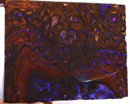 Elusive Claim Koroit Opal Rough 135 cts DO-1906