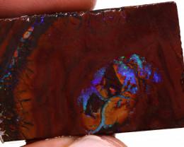 Elusive Claim Koroit Opal Rough 87cts DO-2063