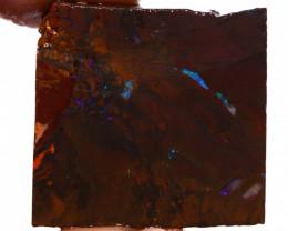 Koroit Opal Rough DO-2064  downunderopals