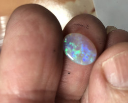 Crystal opal from Lightning ridge