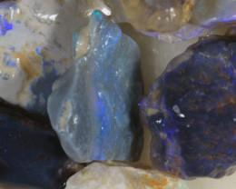 NO RESERVE!! #8  -Beginners Rough Opal -L Ridge [34097] 53FROGS