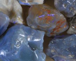 NO RESERVE!! #8  -Beginners Rough Opal -L Ridge [34112] 53FROGS