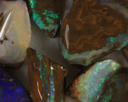 NO RESERVE!! #7 BOULDER Gamble Rough Opal [34293] 53FROGS