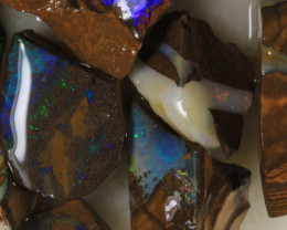 NO RESERVE!! #7 BOULDER Gamble Rough Opal [34299] 53FROGS