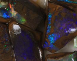 NO RESERVE!! #7 BOULDER Gamble Rough Opal [34308] 53FROGS