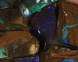 NO RESERVE!! #7 BOULDER Gamble Rough Opal [34315] 53FROGS