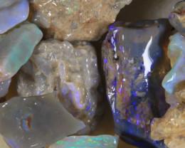 NO RESERVE!! #8  -Beginners Rough Opal -L Ridge [34490] 53FROGS
