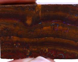 Koroit Boulder Opal Rough  DO-2165 - downunderopals