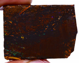 Koroit Boulder Opal Rough  DO-2187 - downunderopals