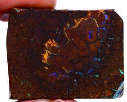 Koroit Boulder Opal Rough  DO-2190 - downunderopals