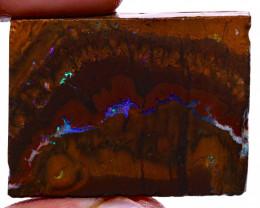 Koroit Boulder Opal Rough  DO-2191 - downunderopals