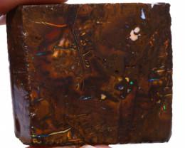 Koroit Boulder Opal Rough  DO-2215 - downunderopals