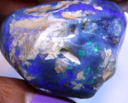 199.40cts Gamble Opal Nobby Rough DT-A5114  dreamtimeopals