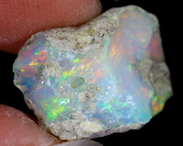 7cts Natural Ethiopian Welo Rough Opal / WR8165