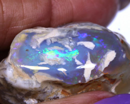 109.55cts Gamble Opal Nobby Rough DT-A5125  dreamtimeopals