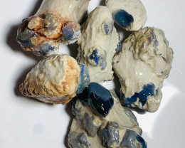 Unknown Big Nobby Fossils With Colours- Should watch the video#1898